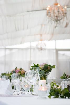 Carpa para recepción de boda