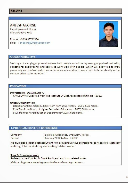 Sample Pdf Resume Resume Contents Service Technician Resume Sales