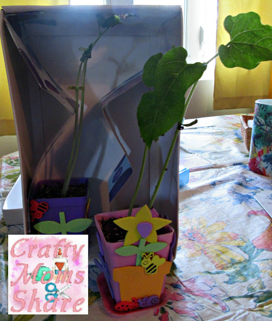 Stem School Bus Org: Crafty Moms Share: Books To Add STEM To Your Summer