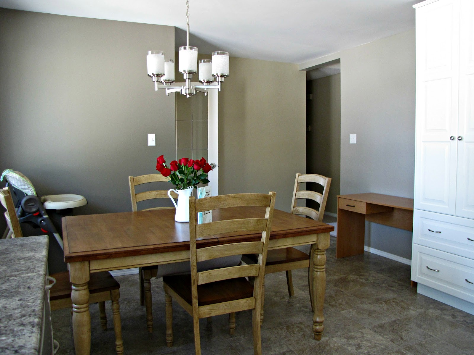 Silver Fox Paint Walls in Kitchen