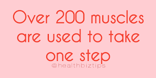 Health Facts & Tips @healthbiztips: Over 200 muscles are used to take one step.