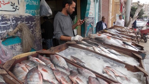 ننشر قائمة بأسعار الأسماك قبل شم النسيم بالمجمعات الاستهلاكية