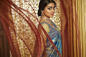 shriya saran cmr shopping mall ad-thumbnail-16