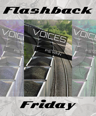 #FlashbackFriday, Voices, P.S. Winn, On My Kindle Book Reviews