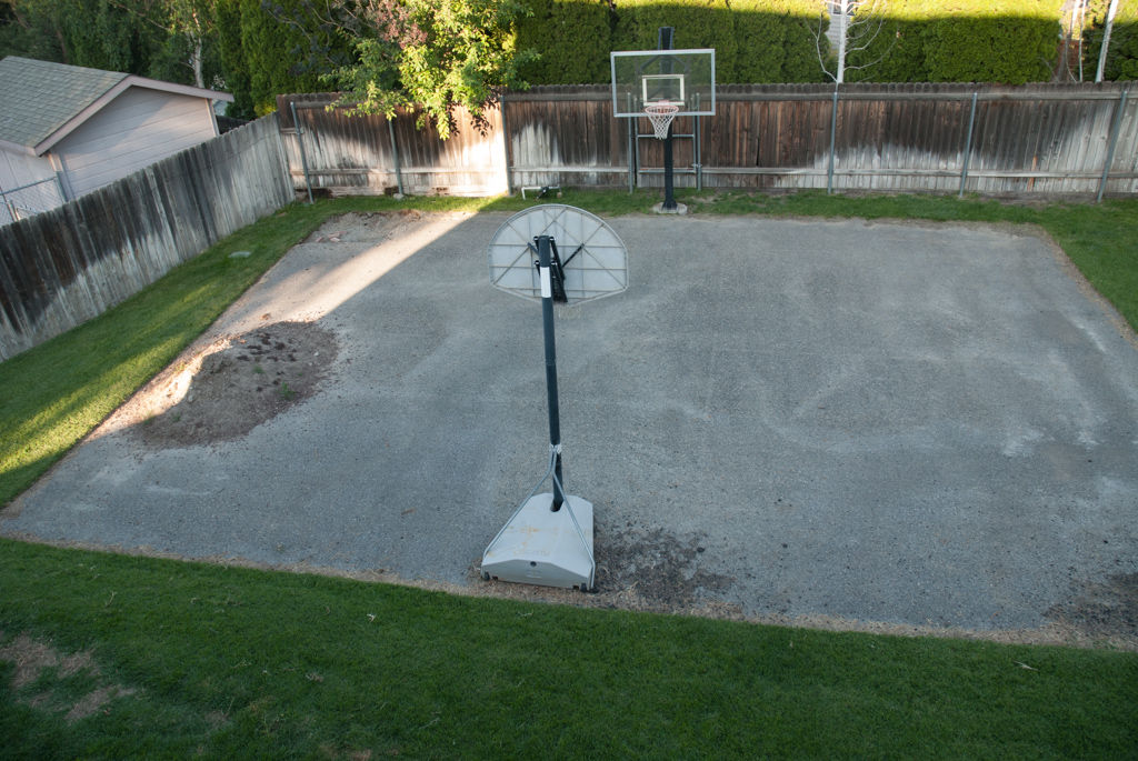 Progressive Odyssey: Backyard Landscaping - Basketball ...