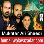 http://www.humaliwalayazadar.com/2012/10/mukhtar-ali-sheedi-nohay-2000-2013.html