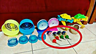 Kandang Aksesoris dan Mainan Sugar Glider