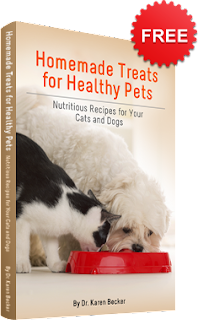Image: Free Homemade Treats for Healthy Pets eBook