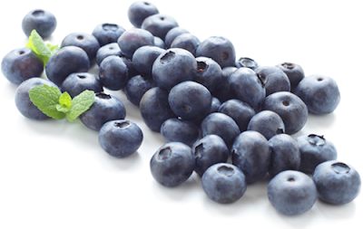 eat-blueberries-to-fight-age-memory-loss