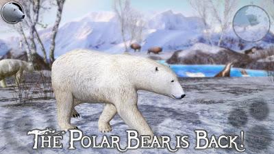 Polar Bear Simulator 2 (PAID) APK For Android