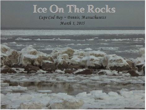 Storm'n Norm'n: Cape Cod Weather Update    The ocean is frozen!