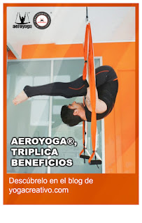 aereo, aerial, aerien, aeroyoga, air, aire, CURSOS, fly, flying, gravity, informacion, que es, seminarios, suspension, talleres, teacher training, workshop, YOGA