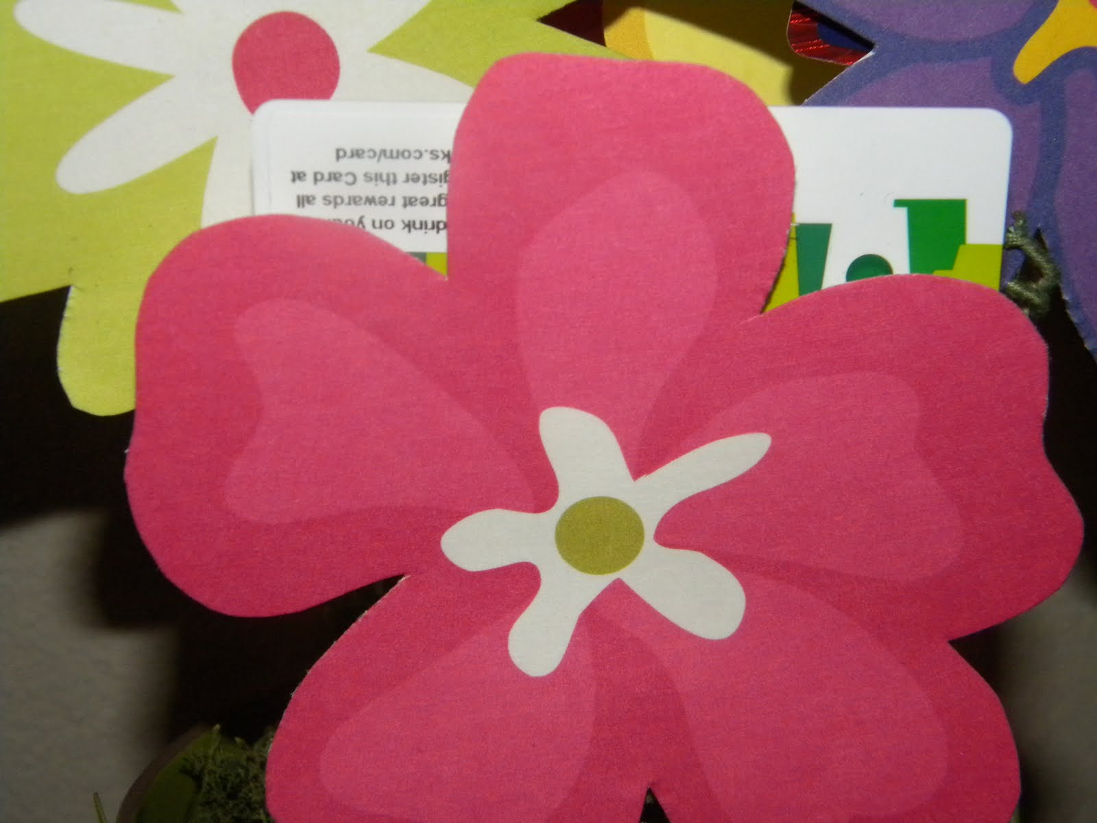 strickly us gift card flower pot
