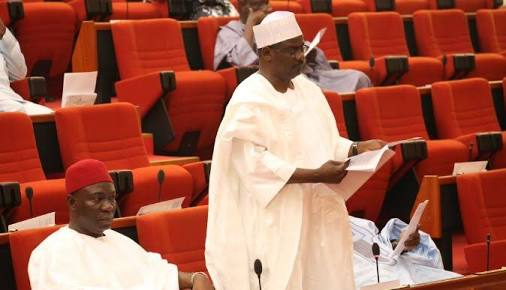 We'll Resist Any Senate Attempt To Veto Buhari - Ali Ndume
