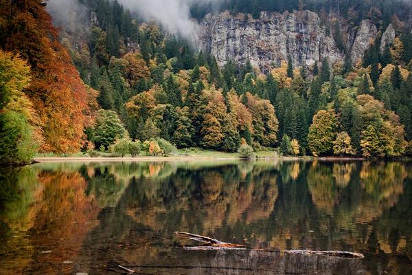 الغابة السوداء - ألمانيا -