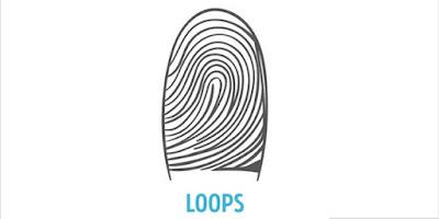 Bentuk Loops
