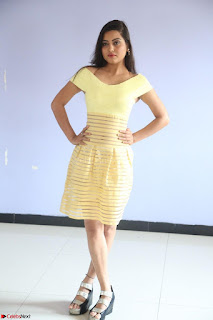 Shipra gaur in V Neck short Yellow Dress ~  057.JPG