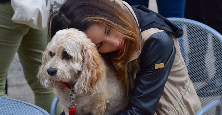 Losing A Dog Can Be As Difficult As Losing A Loved One From Studies