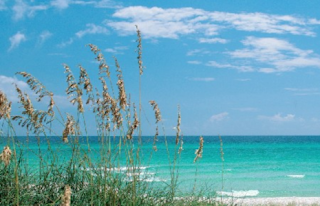 Wind Drift Vacation Rental in Orange Beach ALabama