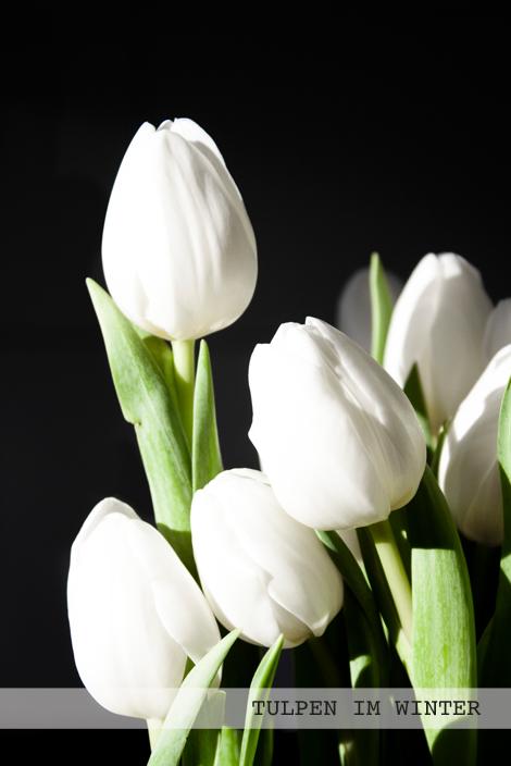 Eine einfache Blumendekoration mit weißen Tulpen.