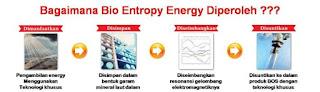 Bio entropy energy