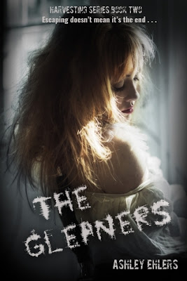 Review: The Gleaners by Ashley Ehlers