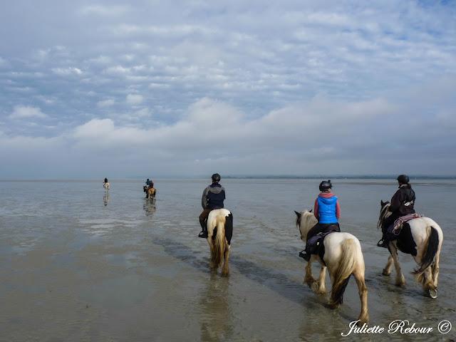 Rando à cheval dans la baie du Mont-Saint-Michel