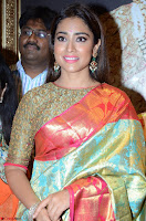 Shriya Saran Looks Stunning in Silk Saree at VRK Silk Showroom Launch Secundrabad ~  Exclusive 059.JPG