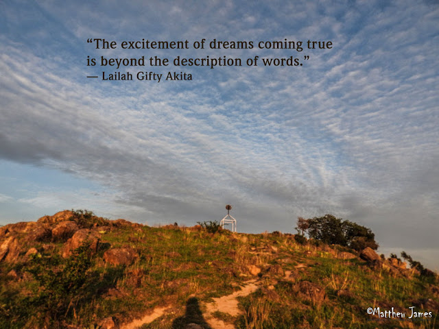 'The excitement of dreams coming true is beyond the descripton of words' - Lailah Gifty Akita
