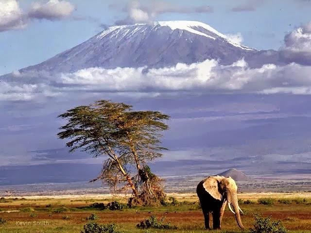 Maciço do Kilimanjaro
