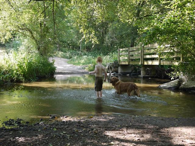 Le niveau du Canut varie en fonction des saisons, et de la sécheresse...