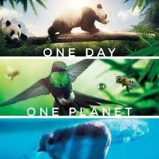 Trái Đất: Một Ngày Tuyệt Vời - Earth: One Amazing Day (2017)