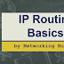 IP Routing Basics by Networking Hub.
