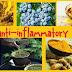Natural Anti-Inflammatories Herbal Tips