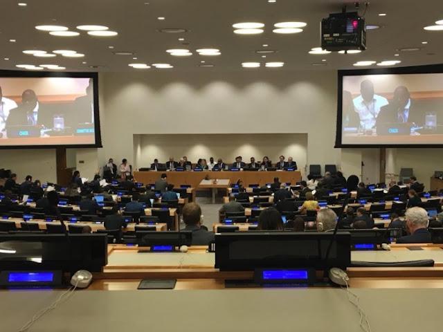 لجنة ال24: الموقعون على عريضة يؤكدون مجددا على الحق الثابت للشعب الصحراوي في تقرير المصير