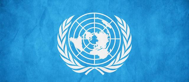 La ONU, organizacion internacional