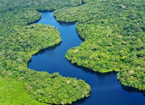 Amazônia e Sua Biodiversidade Ecocultural