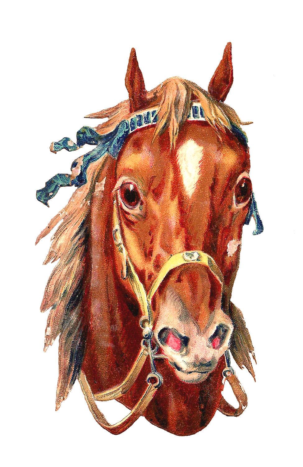 horse lovers clip art - photo #37