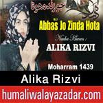 http://www.humaliwalayazadar.com/2017/08/alika-rizvi-nohay-2018.html