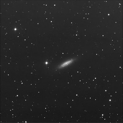 RASC Finest galaxy NGC 6503 luminance