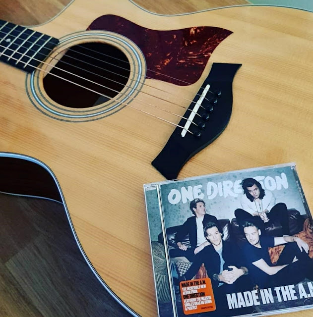 One direction- 1D- music- travel