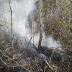 Jaguarari: Incêndio na Serra do Cruzeiro, em Catuni, é controlado, diz Corpo de Bombeiros