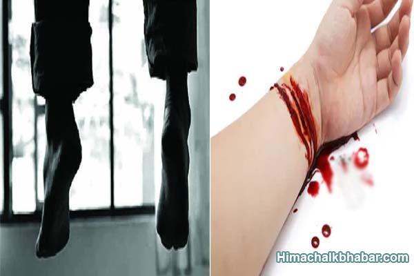 हिमाचल : युवक ने लगाया फंदा और लड़की ने नसें काटकर अपनी जीवन लीला कर ली समाप्त