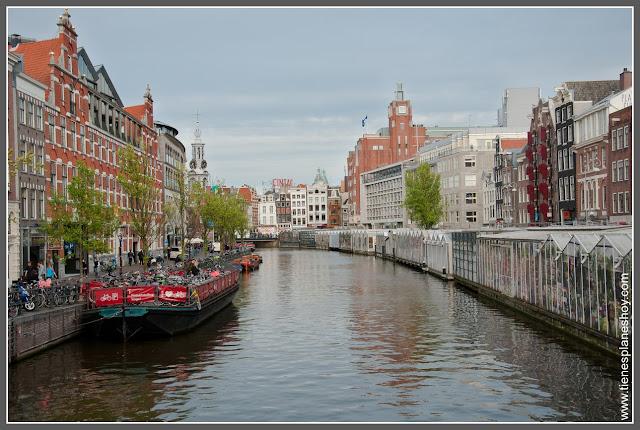 Mercado de las Flores Bloemenmarkt Amsterdam (Países Bajos)