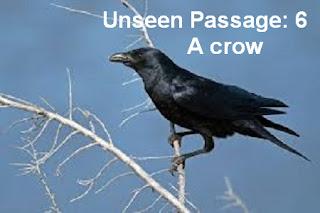 প্রাথমিক সমাপনী প্রস্তুতি-2018: Unseen passage(19)- The crow is an ugly bird...... (Download Now!)