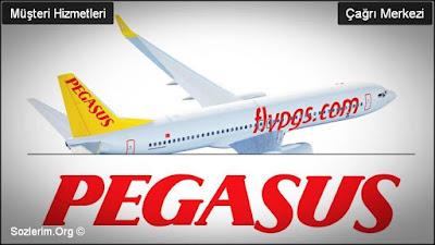 pegasus müşteri hizmetleri, pegasus hava yolları, pegasus iletişim