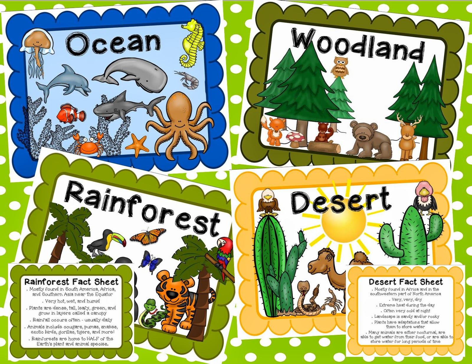 Simply SWEET TEAching: Animal Classification and Habitats Unit