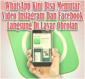 WhatsApp Kini Bisa Memutar Video Dari Instagram dan Facebook Langsung Di Layar Obrolan
