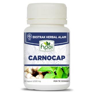 Obat Herbal Untuk Kanker Yang Ampuh Dan Aman
