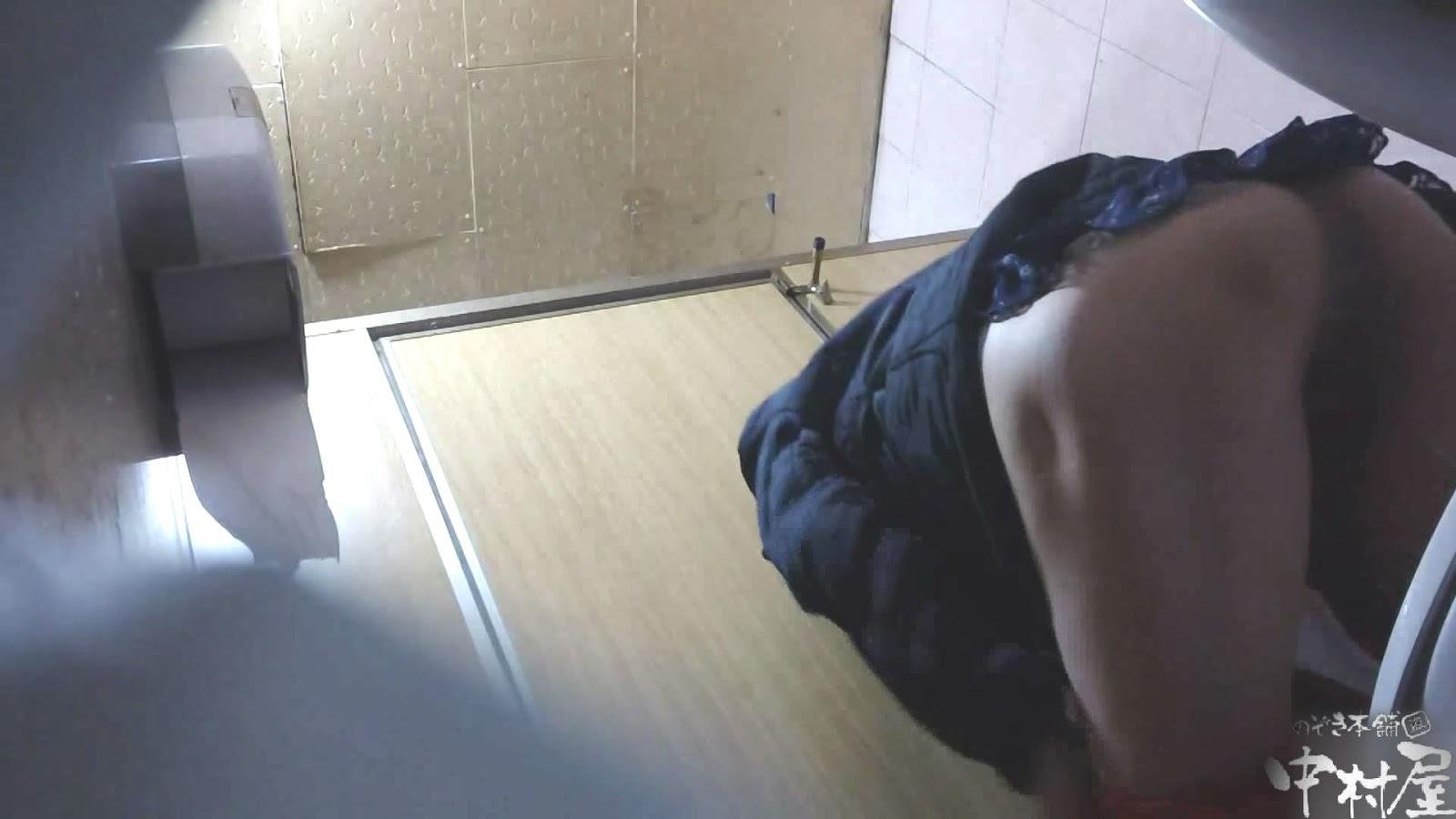 Jane toilet voyeur korea x hamster